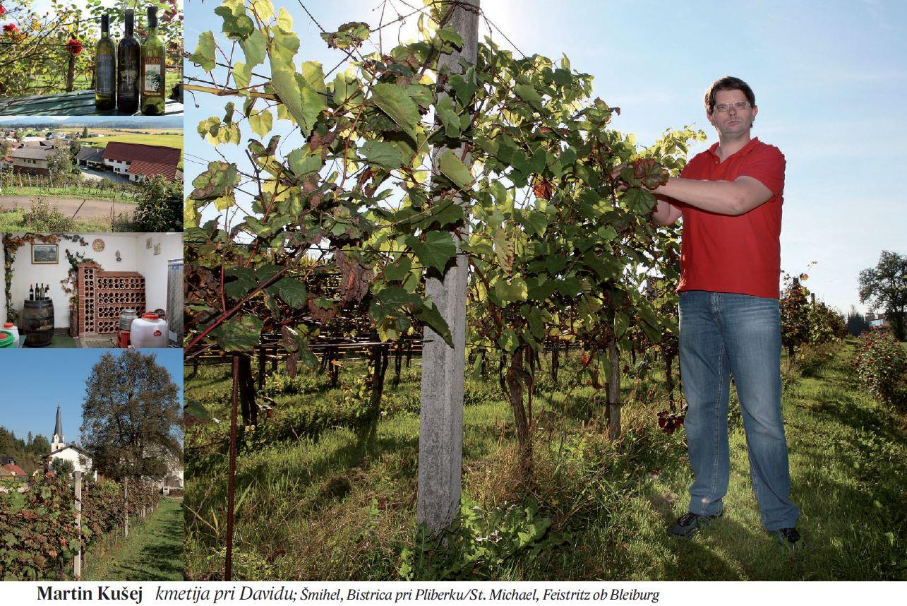 Martin Kušej kmetija pri Davidu; Šmihel, Bistrica pri Pliberku/St. Michael, Feistritz ob Bleiburg